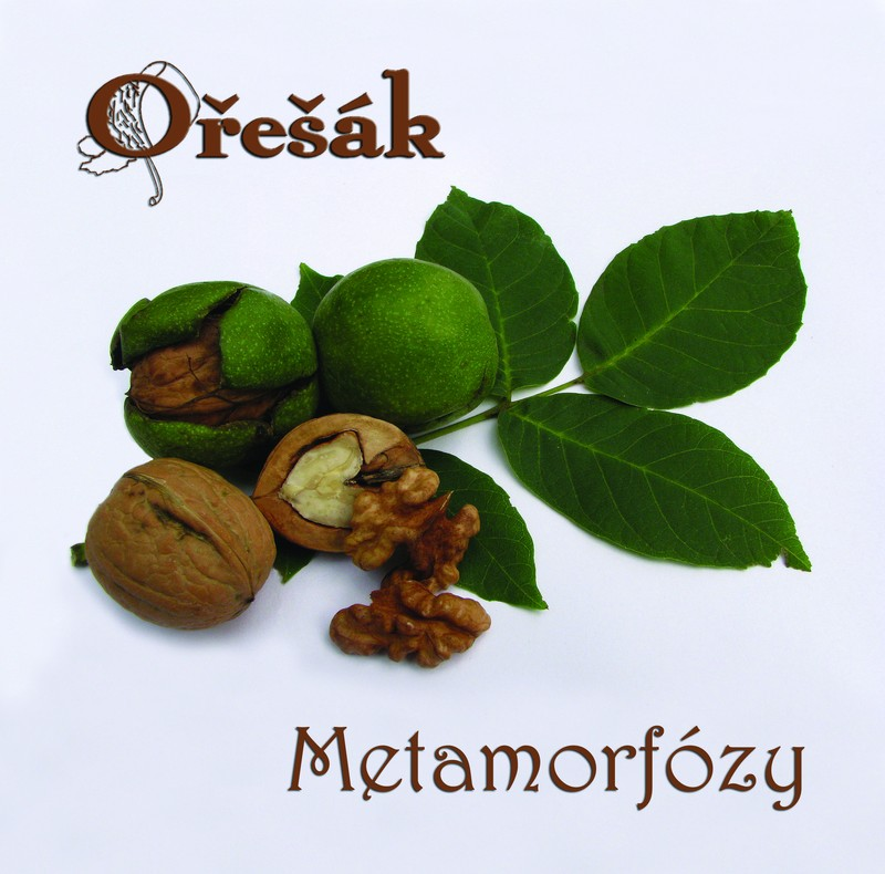 Metamorfózy cd